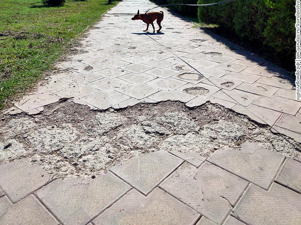 Плитка на терренкуре, пешеходно-целебный маршрут для отдыхающе-спотыкающихся